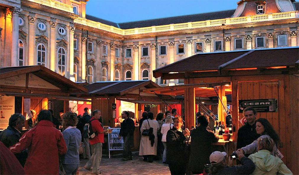 Фестиваль красного вина